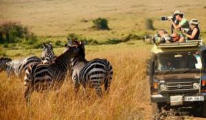 Tourist Attractions in Kenyan Safari